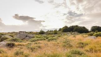 portfolio-paysages (433)